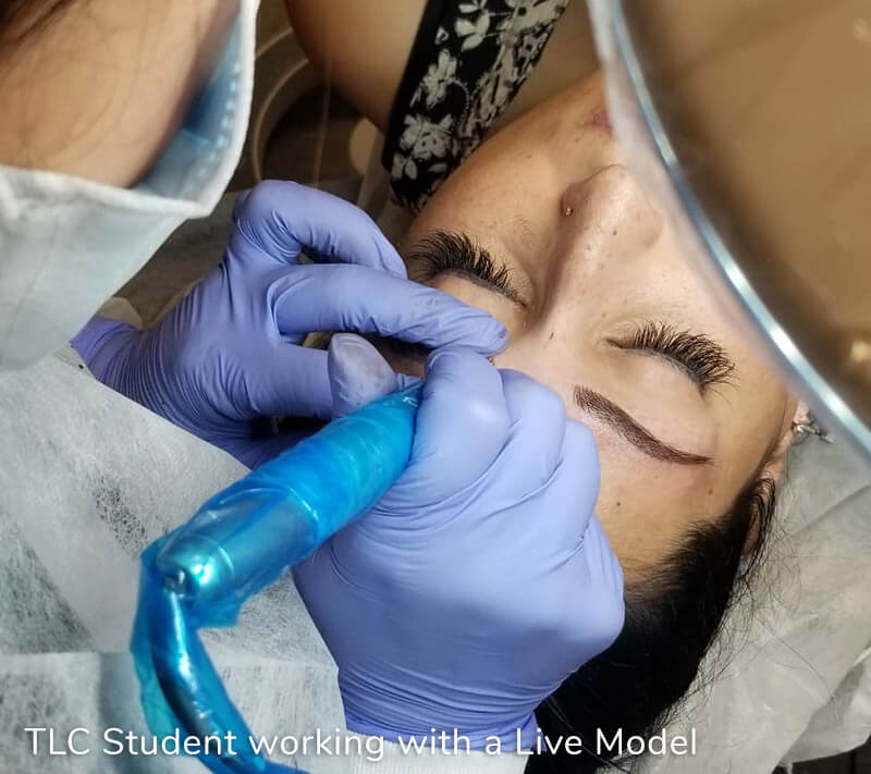 permanent makeup training model eyebrows